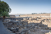 Israel, Sea of Galilee, The ruins at Capernaum