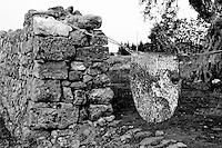 Alessano (LE) - LA campagna di Alessano presenta le caratteristiche tipiche della campagna Salentina: alberi di ulivo, muretti a secco. Si nota la particolarità di grosse formazioni rocciose nel terreno che non sono comuni in tutte le zone agricole salentine. Tipico e rudimentale sistema di protezione di un campo privato.