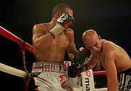 Picture by Alan Stanford/Focus Images Ltd +44 7915 056117<br /> 16/11/2013<br /> Eubank Jr. lands a knockout blow to Frankie Borg during their middleweight bout at Glow Bluewater, Greenhithe.