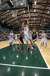 10 January 2009: Christina Solari puts back an offensive rebound for 2 points. The Lady Titans of Illinois Wesleyan University downed the and Lady Thunder of Wheaton College by a score of 101 - 57 in the Shirk Center on the Illinois Wesleyan Campus in Bloomington Illinois.