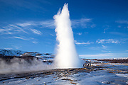 Erupting spring Strokkur fountain geyser at Geysir Geothermal Area a field of hot pools and water spouts is one of Iceland's most famous geysers