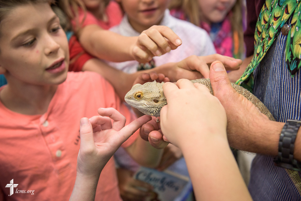 4th grade teacher Craig Schaubs lets students handle a classroom pet animal on Thursday, Oct. 27, 2016, at First Immanuel Lutheran School in Cedarburg, Wis. LCMS Communications/Erik M. Lunsford