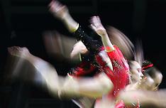 Artistic gymanstics Rio Olympics 2016