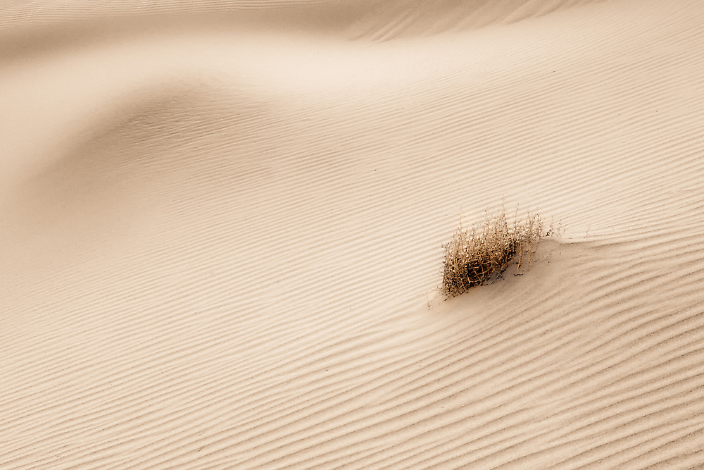 Mesquite Sand Dunes, Death Valley, CA