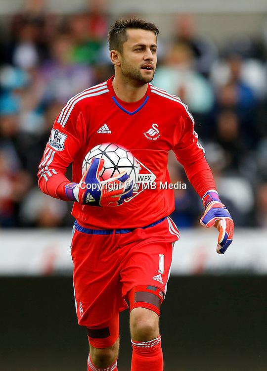 Swansea City goalkeeper Lukasz Fabianski