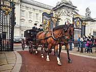 cof buckingham palace london england uk