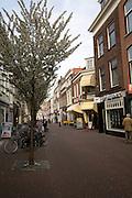 Pedestrianised street Delft, Netherlands