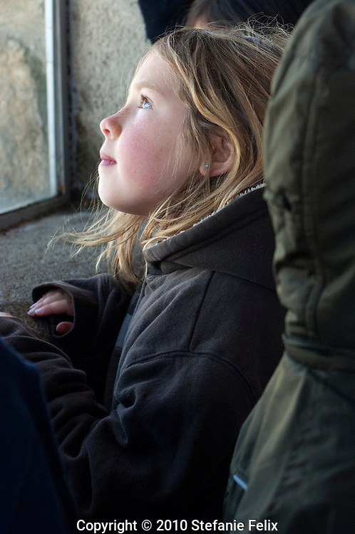 Middle school student on a field trip looks at the view from the summit house on Mt. Diablo