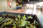 Gourmetrestauranten Credo og bistroen Jossa Mat og drikke er gjenåpnet i en tidligere verkstedhall i bydelen Lilleby i Trondheim. Nye  Credo har blitt et moderne og romslig spisested med innslag av både ny og gammel tid. Tilhold altså på et gammelt industriområde, men omgitt av hektisk boligutbygging på omtent alle kanter. Credo bruker lokale råvarer, og er selvforsynt med alt grønt. Det dyrkes i samarbeid med et gårdsbruk i sommersesongen, og innendørs på tilsammen 50 m2 fordelt på alle steder der det er mulig.