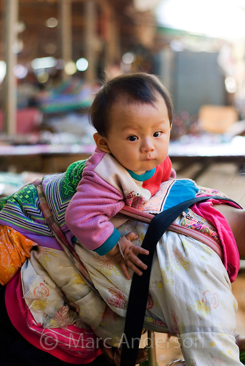 Baby from the Hmong hill tribe tied onto his mothers back, Doi Inthanon, Thailand