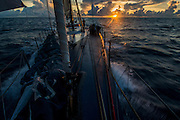 Maserati sailing offshore from Honolulu to Kong Kong