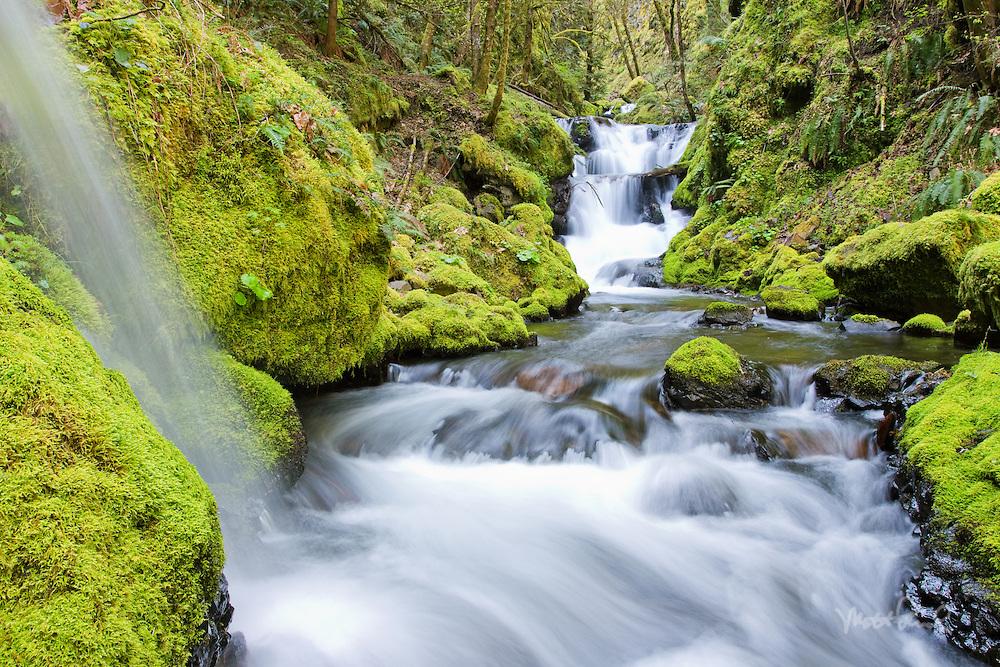 Emerald Falls, Columbia Gorge, Oregon.