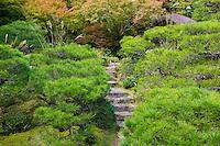 Kyoto Japan Okochi Denjiro stone steps in garden