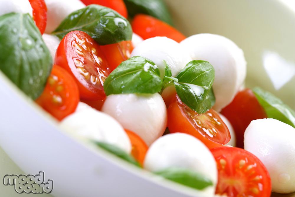Close of tomato and mozarella in dish