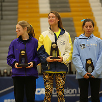 NCAA Division III Women's Cross Country Championship Awards
