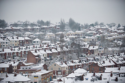 Snow covered suburban houses