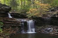 R.B. Ricketts Falls, Ricketts Glen State Park Pennsylvania
