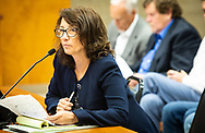 Lisa Jordan with the  Tulane Environmental Law Clinic (TELC) speaking during the appeal hearing of a permit granted for Wanhua at the St James Parish Council Meeting on July 24, 2019.  Wanhua plans to build a  $1.25 Billion Chemical Complex t in St. James Parish but a group of residents in the parish are fighitng against it.  THe Tulane Environmental Law Clinic (TELC) is representing community members, RISE St. James and the Louisiana Bucket Brigade in a fight to stop the plant from being permitted.