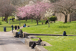 © Licensed to London News Pictures; 21/03/2020; Bristol, UK. Coronavirus Pandemic; people, often on their own, enjoy fine weather in Castle Park during the coronavirus crisis, the day after the UK prime minister ordered the closure of all pubs, bars, cafes, restaurants and gyms to try and prevent the spread of the coronavirus. The UK Government is urging people to self isolate but also to get fresh air and exercise outside with social distance between people. Photo credit: Simon Chapman/LNP.