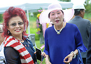 From left, Young Saccade and Miho Chung chat after the groundbreaking ceremony for the construction of the Korean War Memorial, America-Korean Alliance Peace Park Tuesday, August 8, 2017 at Memorial Grove Park in North Wales, Pennsylvania. (WILLIAM THOMAS CAIN / For The Philadelphia Inquirer)
