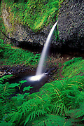 Image of a waterfall along the Historic Columbia River Highway, Oregon, Pacific Northwest