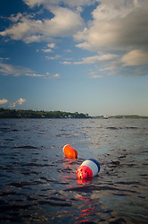 Lobster Buoys, Castine Harbor, Castine, Maine, US