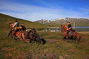 Dyrhaug ridesenter, Ramsjøhytta. Ole Ingebrigt Dyrhaug, Bjørn fra Hallingdal på den andre hesten (med løshest).  Foto: Bente Haarstad. Flere firma satser på hesteturisme fjellet i Tydal, og i bygda Stugudal er det flere islandshester enn fastboende. There are many possibilities for riding in the mountains in Tydal in Mid-Norway. Dyrhaug Ridesenter. Dyrhaug Ridesenter,