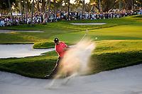 Tiger Woods - Doral Resort and Golf Club - Doral, FL