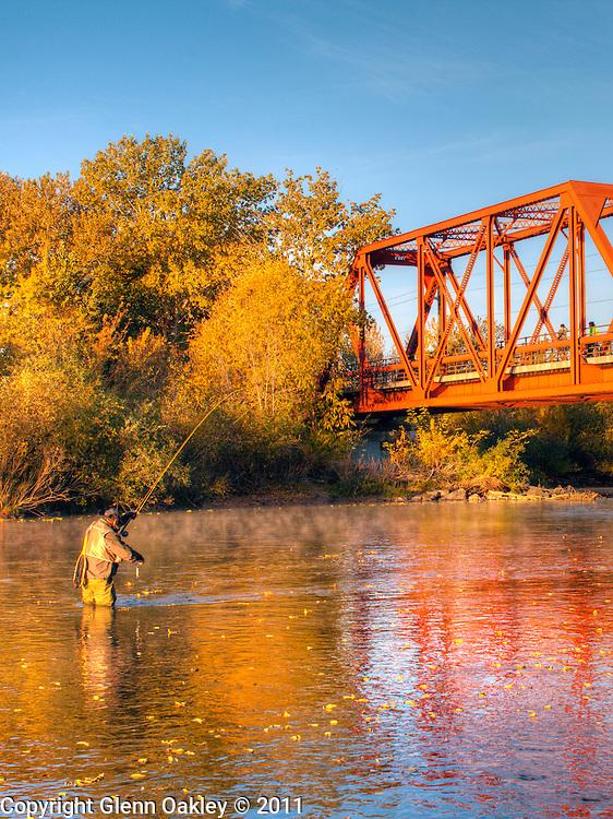 Fisherman with trout below Greenbelt railroad trestle, Boise Idaho