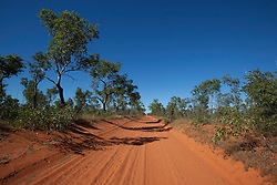Trees line the pindan sands of the Cape Leveque road on the Dampier Peninsula, north of Broome, in Western Australia.