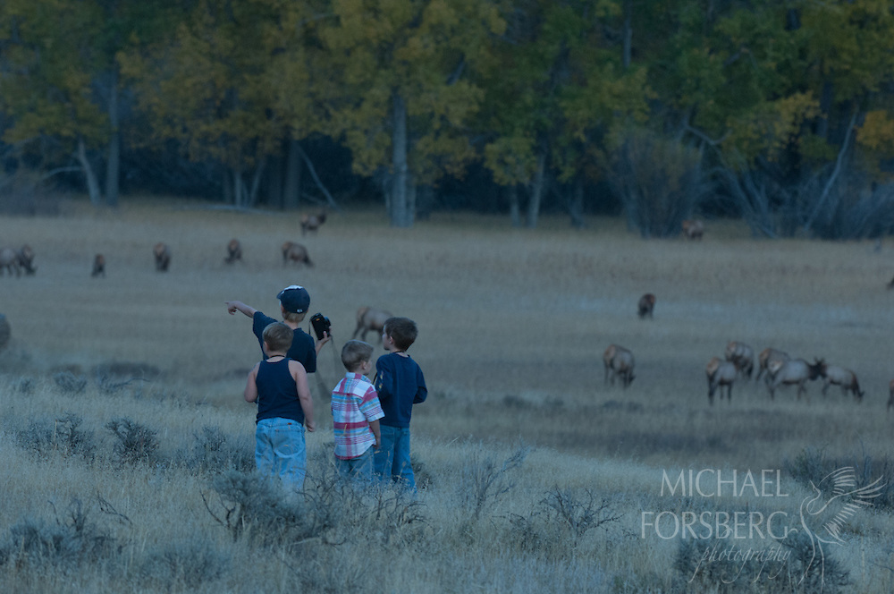 Charles M Russell National Wildlife Refuge, Missouri River breaks, Montana<br /> <br /> Wildlife watchers  line the roadside in the evening at designated elk viewing area to watch rutting elk herds in the valley floor
