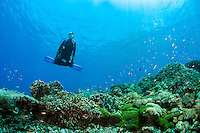 A Diver holds a yoga pose over the reef<br /> <br /> Shot in Indonesia