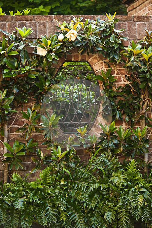 Garden gate at a historic Charleston Single style home in Charleston, SC.
