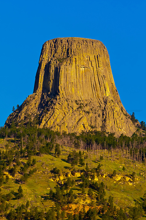 The 867 foot tall Devils Tower (a granite monolith which is a sacred site to American Indians), Devils Tower National Monument, Wyoming USA