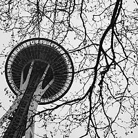 View of Seattle's Space Needle, April 2010.