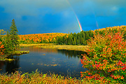 Rainbow over wetland in autumn<br />