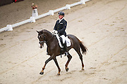 Evert de Jong - Presidents Cabola<br /> It's All Dressage 2016<br /> © DigiShots