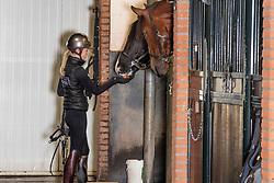 Fry Charlotte, GBR, Everdale<br /> Stal Van Olst - Den Hout 2019<br /> © Hippo Foto - Dirk Caremans<br /> $14/02/2019