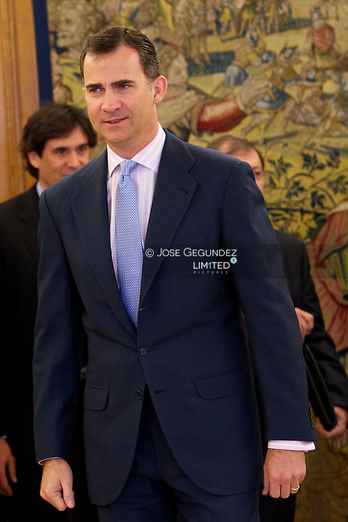 Prince Felipe attends an audience the Board of Governors of Fedit, Technology Centers of Spain at Zarzuela Palace in Madrid