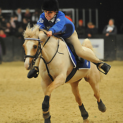 Horse of the Year Show | NEC Birmingham | 11 October 2013