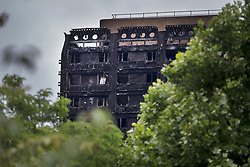 © Licensed to London News Pictures. 29/06/2017. London, UK. The burnt remains of Grenfell Tower loom over nearby trees as retired Court of Appeal judge Sir Martin Moore-Bick meets with survivors at St Clements Church. He has been chosen to lead the public inquiry into the Grenfell Tower fire. Photo credit: Peter Macdiarmid/LNP