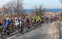 Peloton at Baredi, Gazon climb during the cycling race 6. VN Slovenske Istre / 6th Slovenian Istra Grand Prix, on February 24, 2019 in Izola/ Isola, Slovenia. Photo by Vid Ponikvar / Sportida