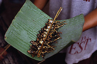1998, Vientiane, Laos --- A brochette of small grilled frogs being served on a banana leaf in Vientiane, Laos. --- Photograph by Owen Franken