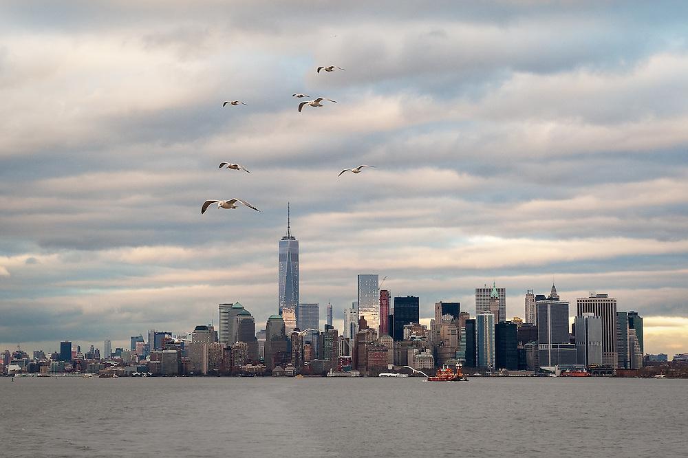 &quot;Seagull Skyline&quot;<br /> Lower Manhattan<br /> New York City