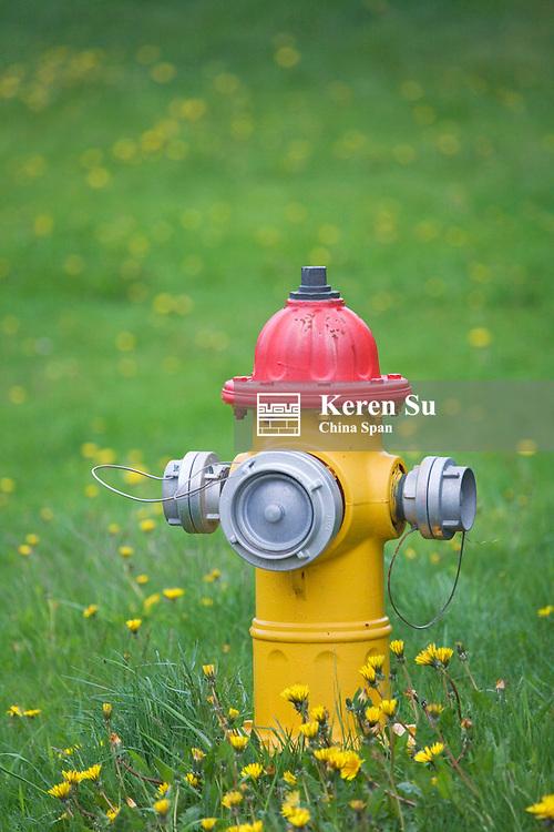 Fire hydrant, Reykjavik, Iceland