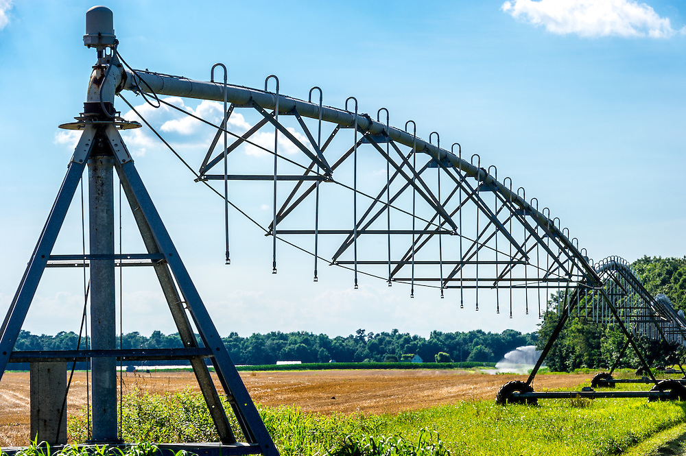 A pivot irrigation system for watering crops on a farm located in Federalsburg, Maryland.