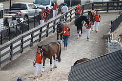 Findsley, Alphaville N.O.P., Wallace, Demantur N.O.P.<br /> World Equestrian Games - Tryon 2018<br /> © Hippo Foto - Sharon Vandeput<br /> 21/09/2018