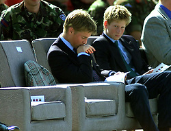 Prince William and Prince Harry (R) look pensive on the day that the report into the death of their mother, Princess Diana, is published in France.