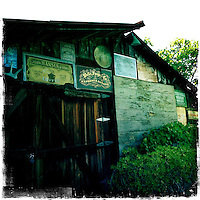 2013 May 13: Healdsburg, Sonoma wine country iphone Hipsta.