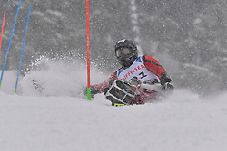 LEE Chi Won LW11 KOR at 2018 World Para Alpine Skiing World Cup slalom, Veysonnaz, Switzerland